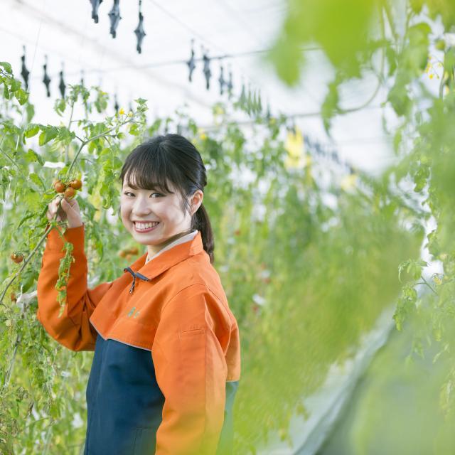新潟農業・バイオ専門学校 【先端農業・農業分野】生産・販売・経営を目指す方へ!3